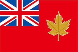 1946年の特別合同委員会が推奨する国旗