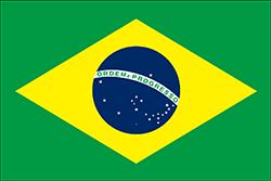 初期のブラジルの国旗