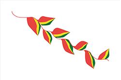 フロール・デ・パトゥフの旗