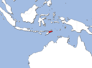東ティモールの地図