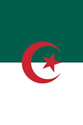 縦バージョンのアルジェリアの旗