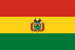 ボリビアの国旗2