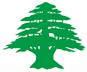 レバノンスギ