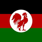 ケニア・アフリカ民族同盟の旗