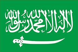 ナジュドの旗(1921-1926年)