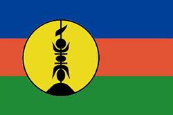 ニューカレドニアの旗