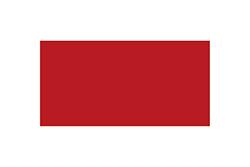 シャールジャの旗