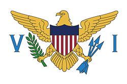 アメリカ領ヴァージン諸島の旗