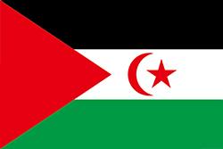 西サハラの旗