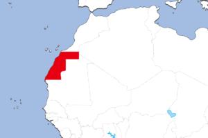 西サハラの地図