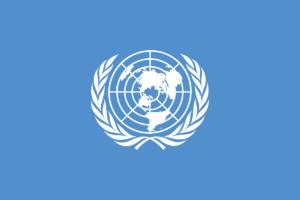 最初の国連旗案