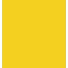 パプアニューギニア-極楽鳥