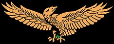 ザンビア-鷲