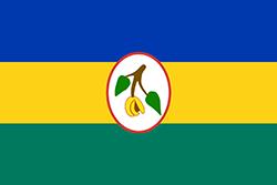 独立時の旗(1967~1974年)